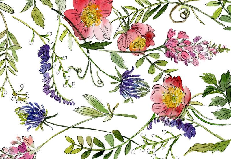 floral_pattern2.jpg