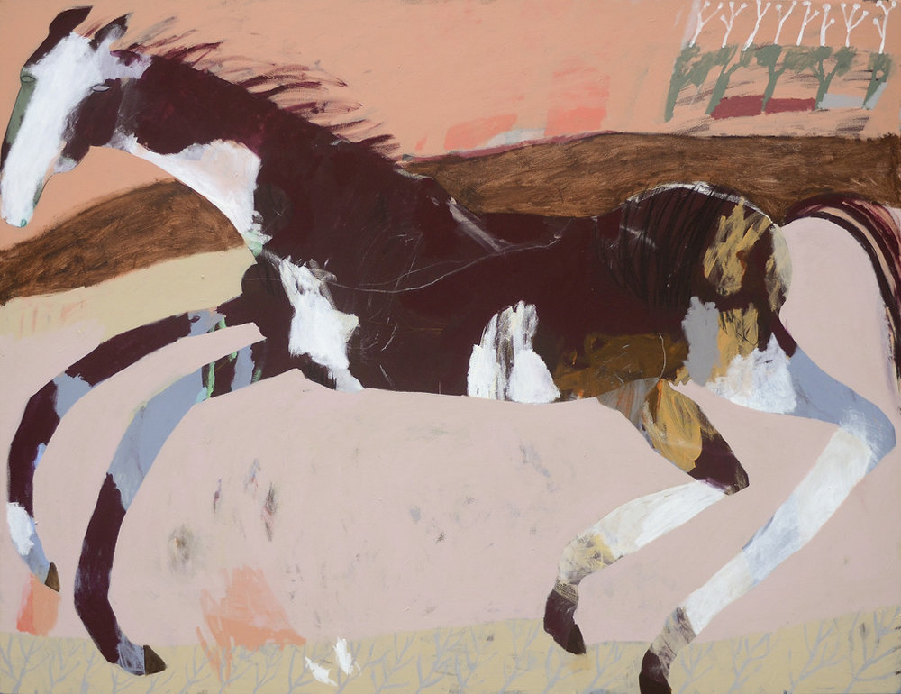 Mary River Brumby Mare  2016 Acrylic and charcoal on cotton canvas 152 x 198cm
