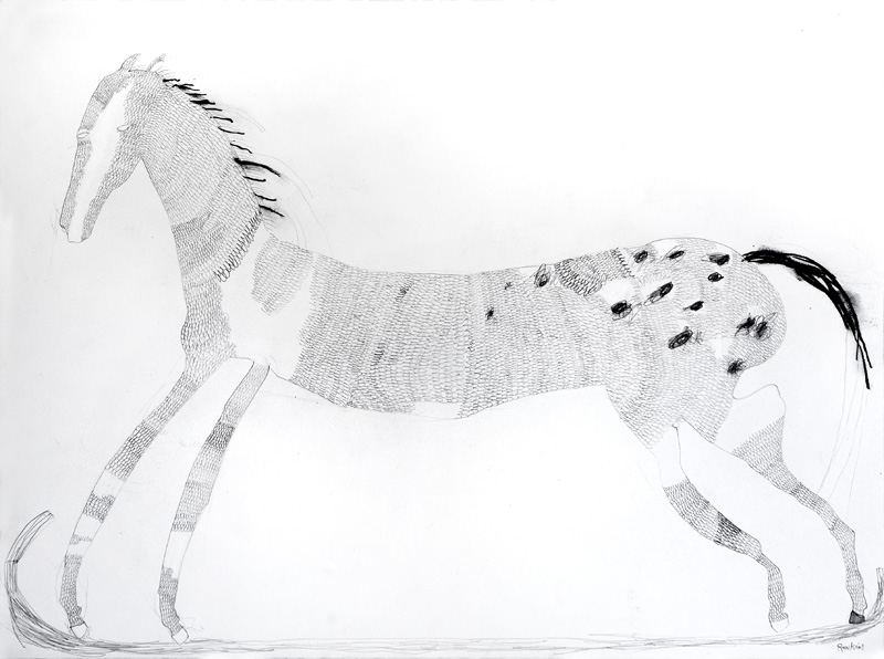 Rocking Horse  2016 Graphite and charcoal on paper 56 x 76cm