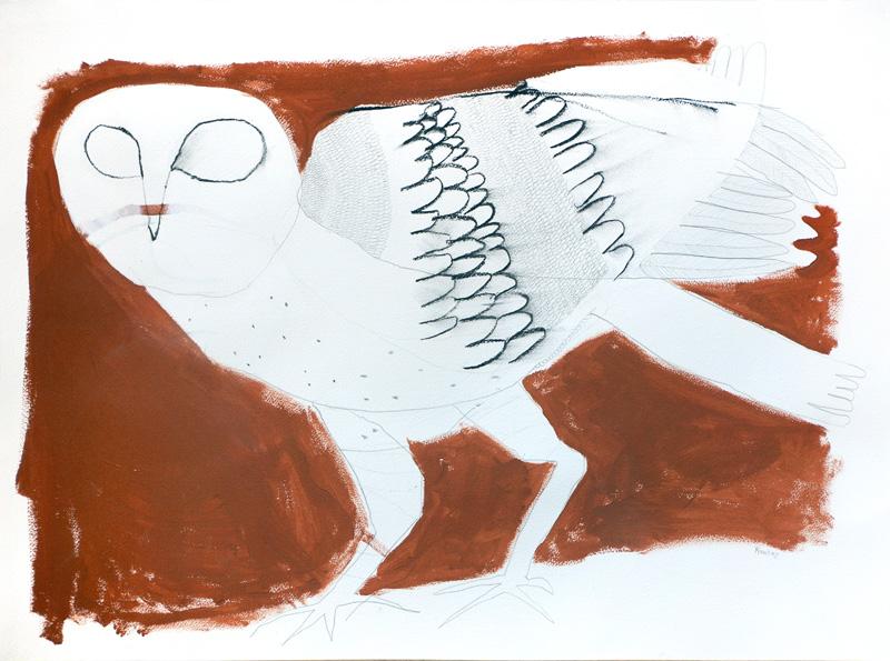 Grass owl  2016 Graphite, gouache, charcoal on paper 56 x 76cm