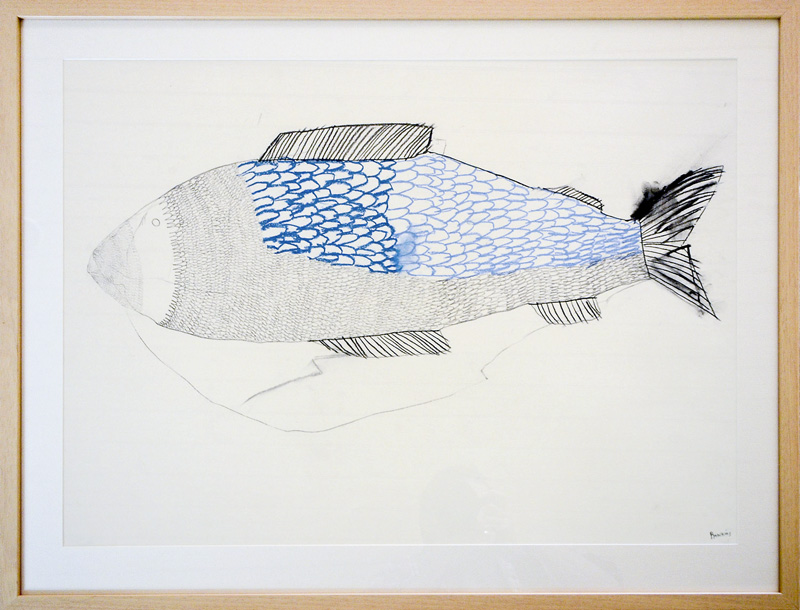 Big Fishy  2015 Graphite, gouache, charcoal on paper 56 x 76cm