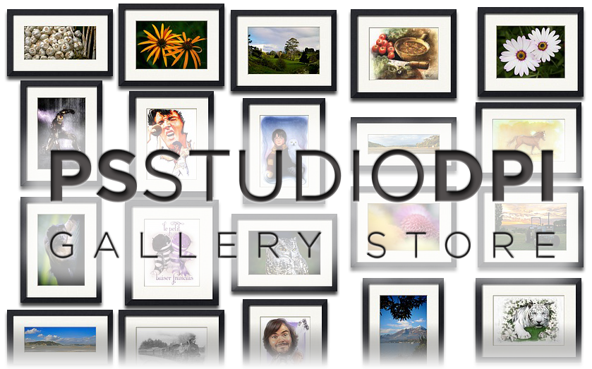 via paulshipper.imagekind.com Check out the new PS STUDIO DPI Gallery Store where you can buy museum quality prints of my Illustration and Photography work.