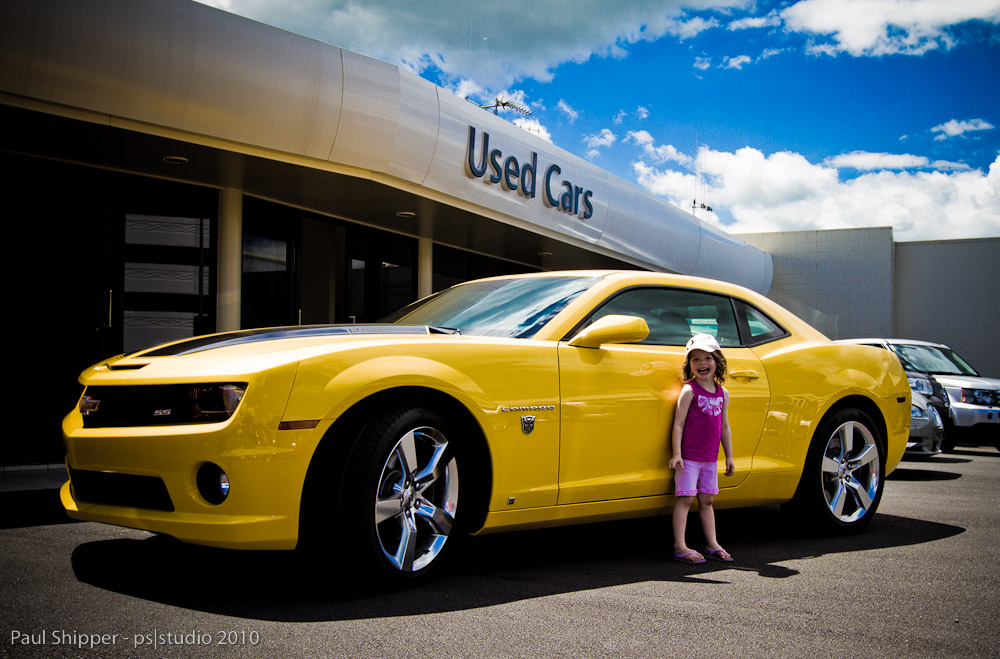 The Day Millie met Bumblebee!