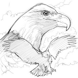 Hi there, here's a sketch for fans of Eagles...