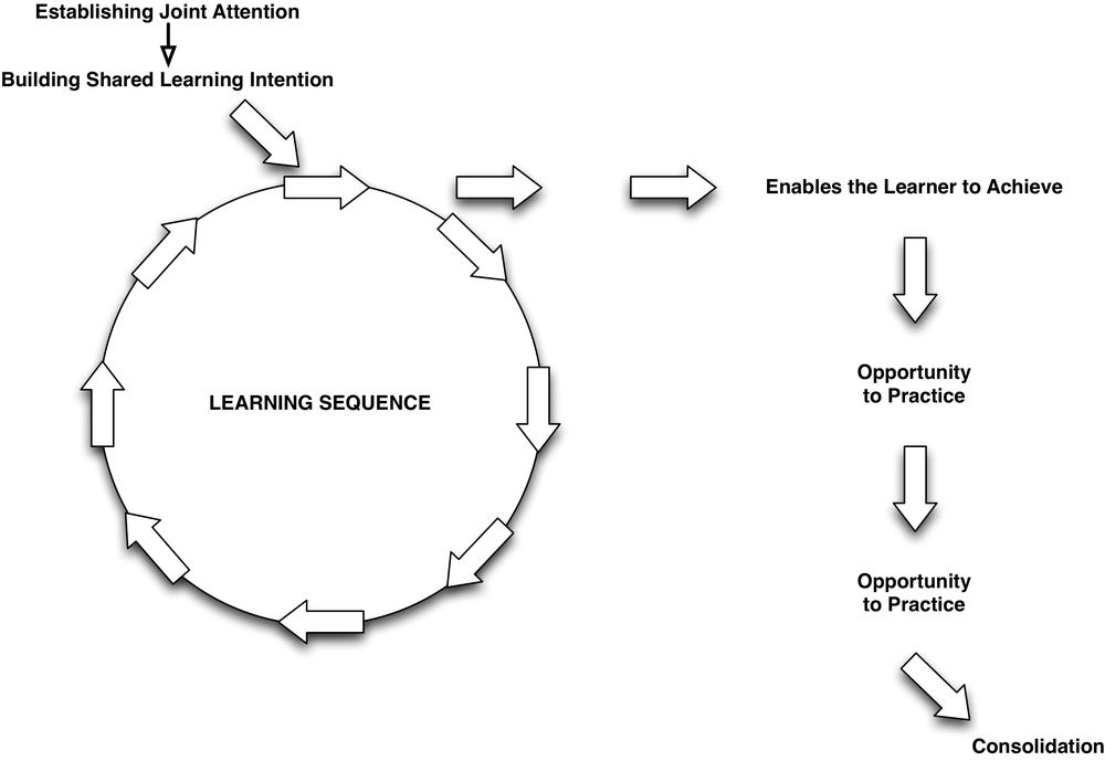 Learning-Sequence-High.jpg