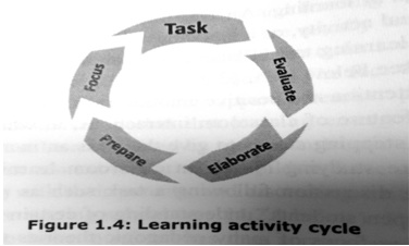 Activity-Cycle.jpg