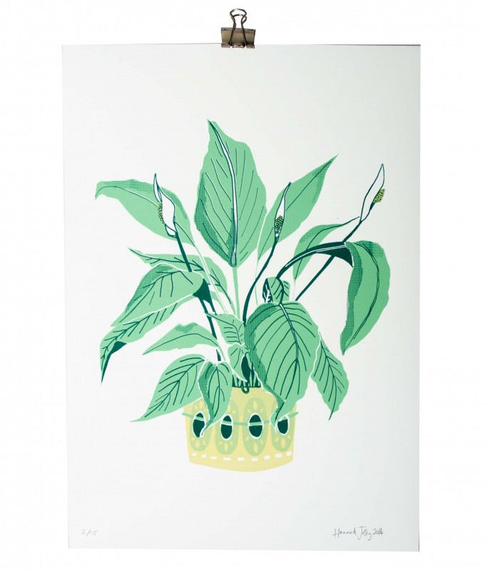 PEACE LILY SCREEN PRINT – HANNAH JOSEY