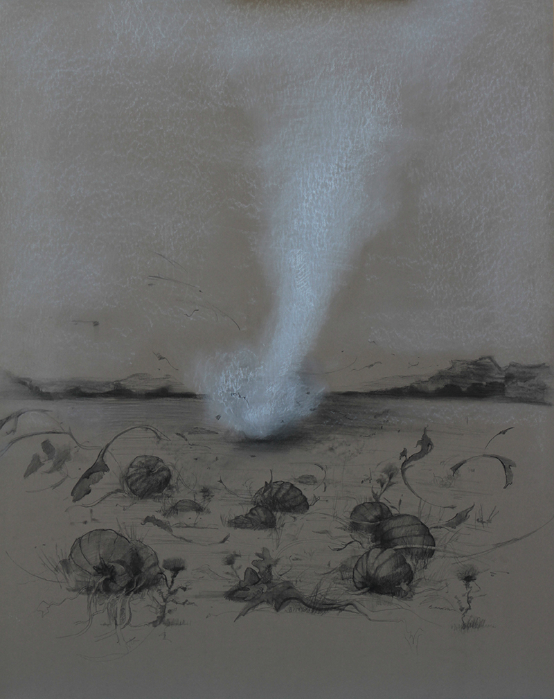Dust Devil in a Pick-Your-Own Field