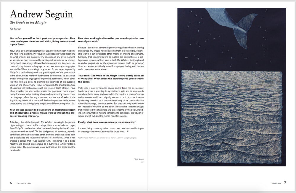 Andrew Seguin: The Whale in the Margin  Don't Take Pictures, Issue 1 (September 2013)