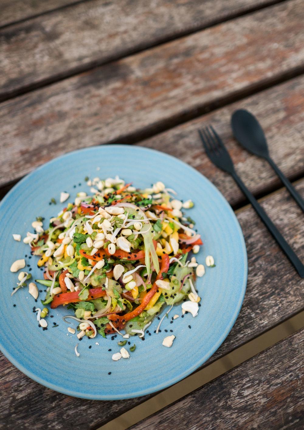 Asiatischer Mango Sellerie-Salat1.jpg