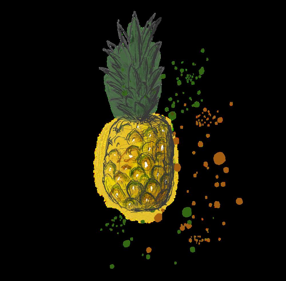 Ananas_neu.png