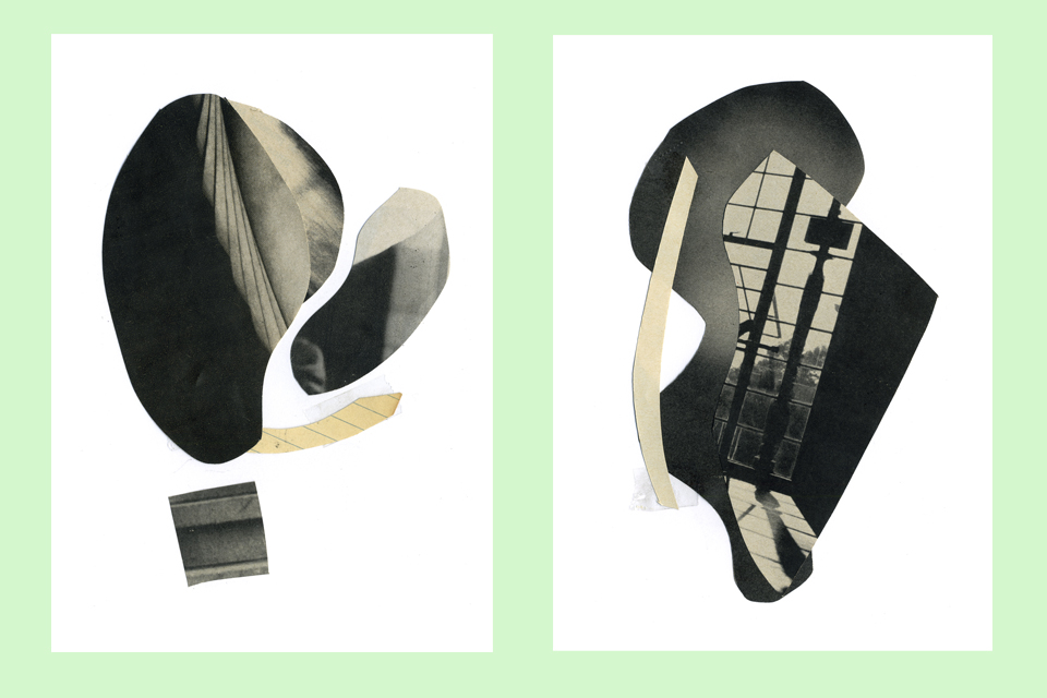 cp collage 1.jpg