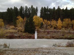 river-fall.jpg