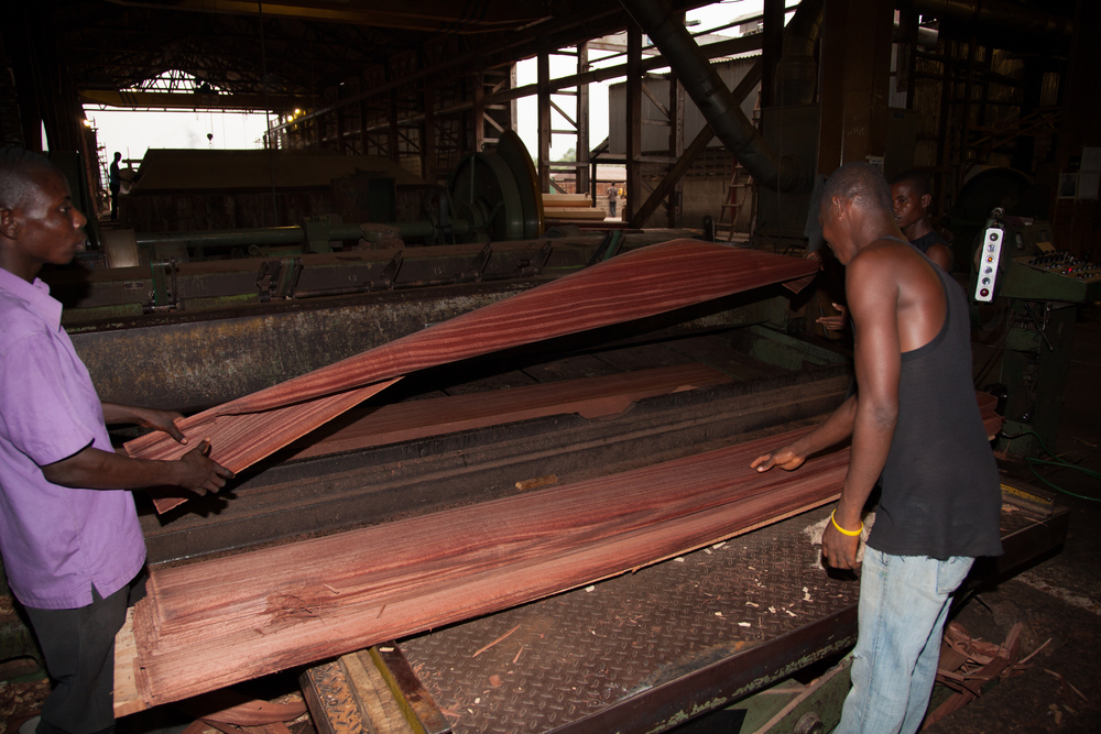 Slicing Danta Veneer - West Africa