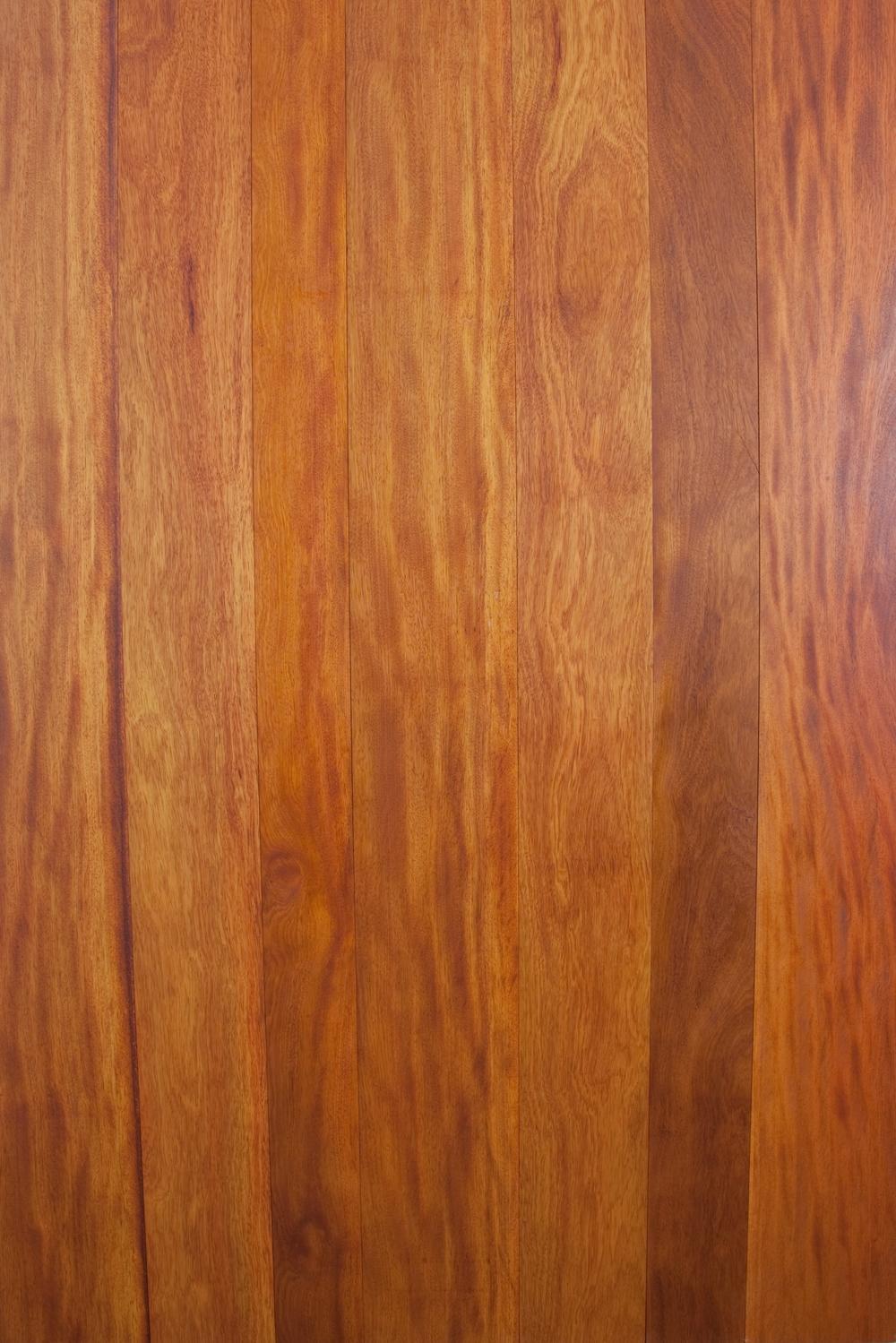 Bilingia Panel-7438.jpg