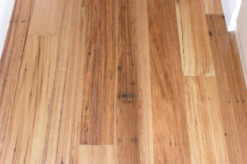 Wormy Chestnut Exotic Hardwood Flooring Lumber
