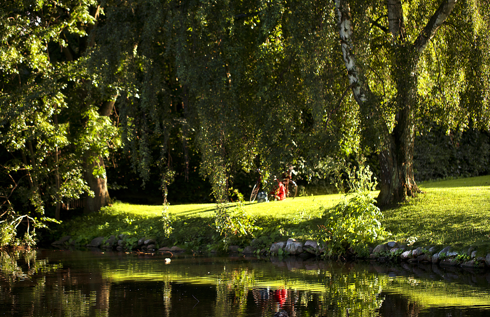 Sunday afternoon in the park Read about Svendborg Comments