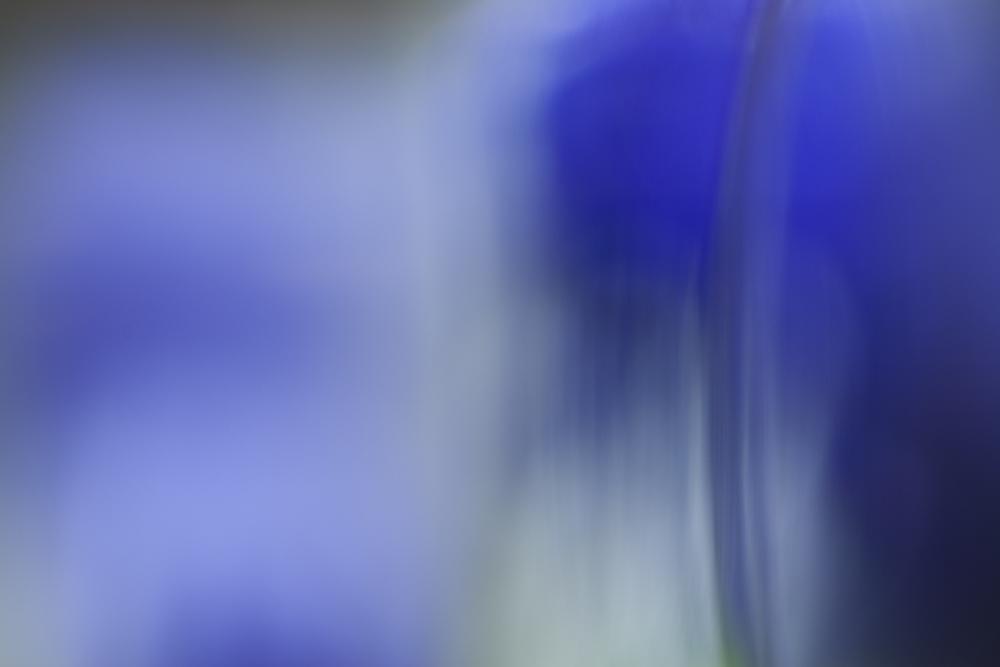 Colour 12