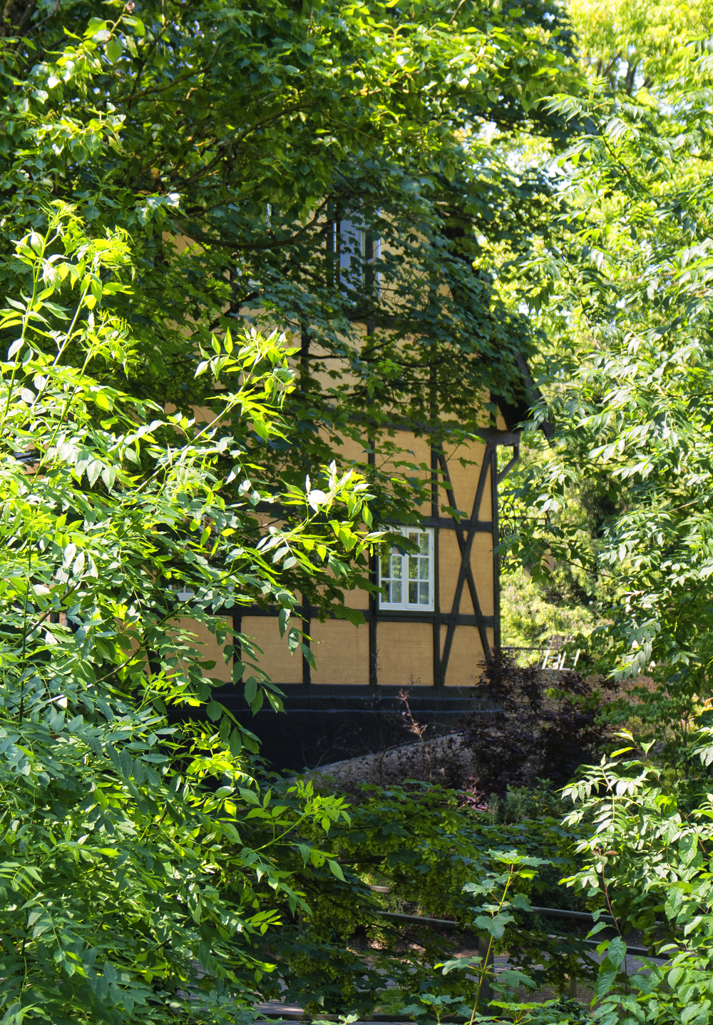 A house at Odense stream Comments