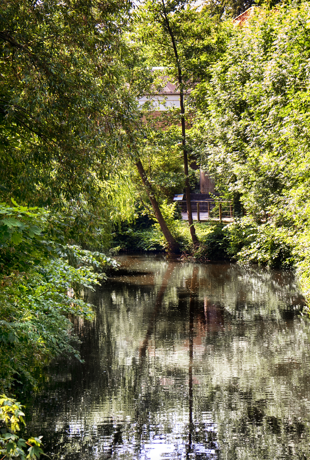 Stream through the city Odense Comments