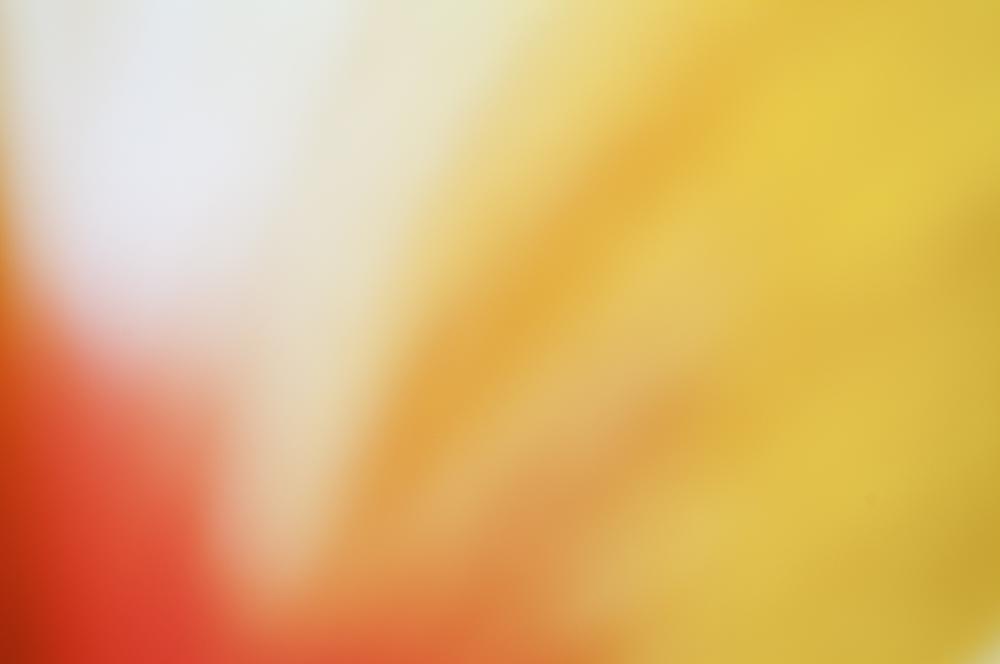 Colour 38