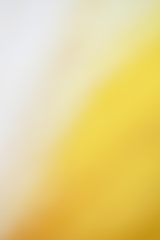 Colour 39