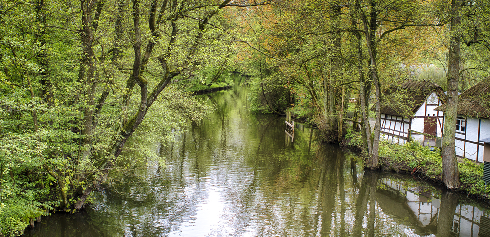 Odense stream Comments