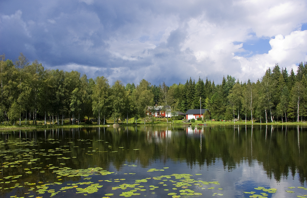 Swedish forest lake Comments