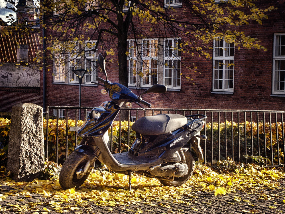 Autumn light Read about Svendborg Comments