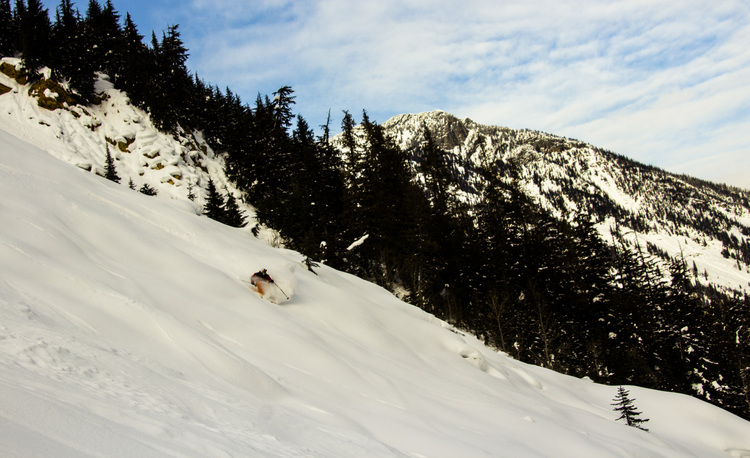 Kyle links some pow turns to end the day.