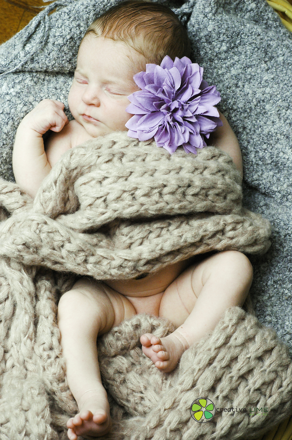 Creative LIME - Newborn Finley-2.jpg