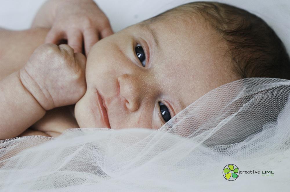 Creative LIME - Newborn Finley-28.jpg