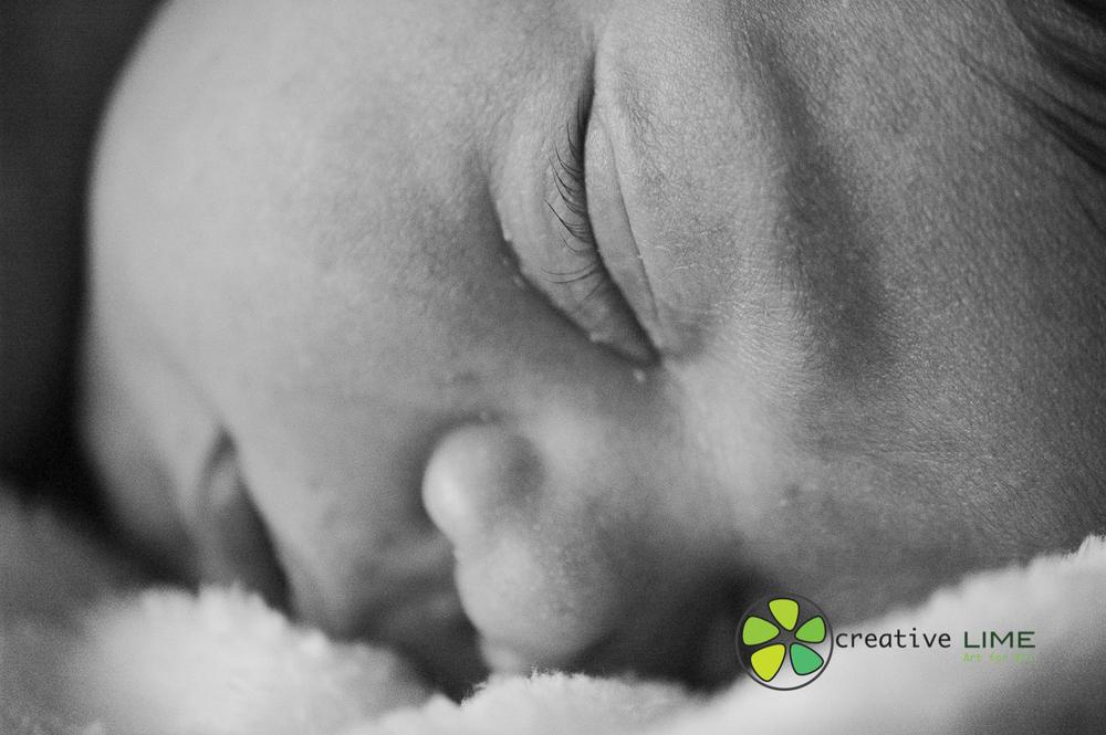 Creative LIME Newborn-6.jpg