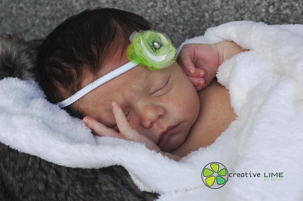 Creative LIME Newborn-8.jpg