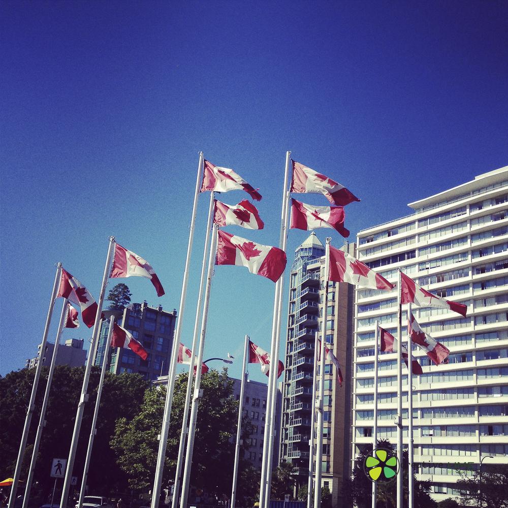 Creative LIME - Canada Day_.jpg