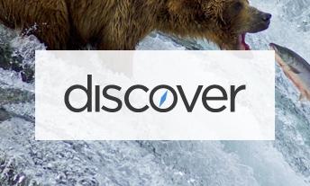 discover-logo.jpeg