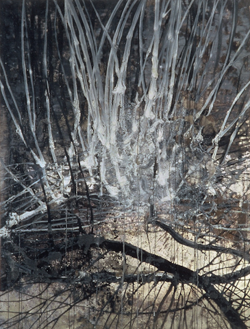 Undergrowth  1989 - 1994