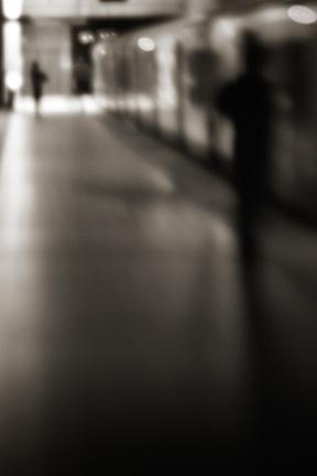 Untitled 14.jpg
