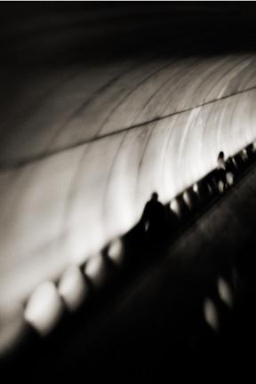 Untitled 19.jpg