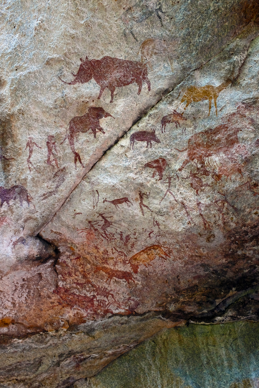 Alueella oli elefantteja, kirahveja ja sarvikuonoja. Ei tietenkään enää.