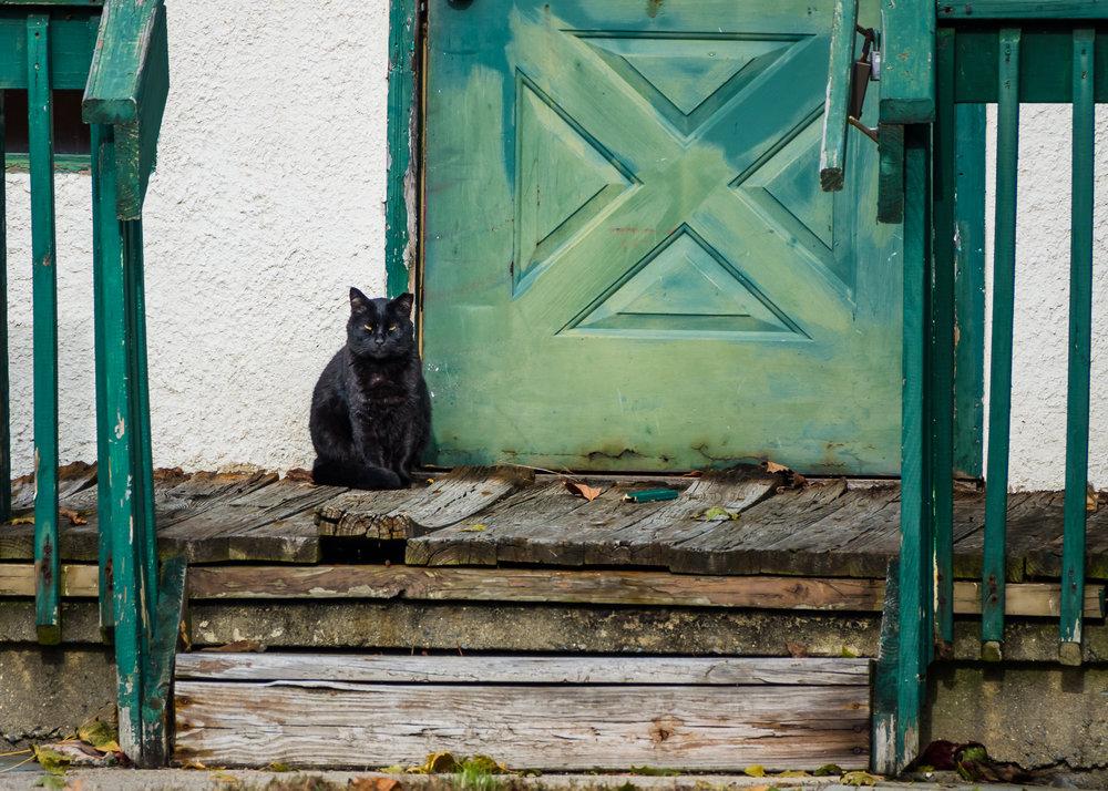 Waiting at an old door