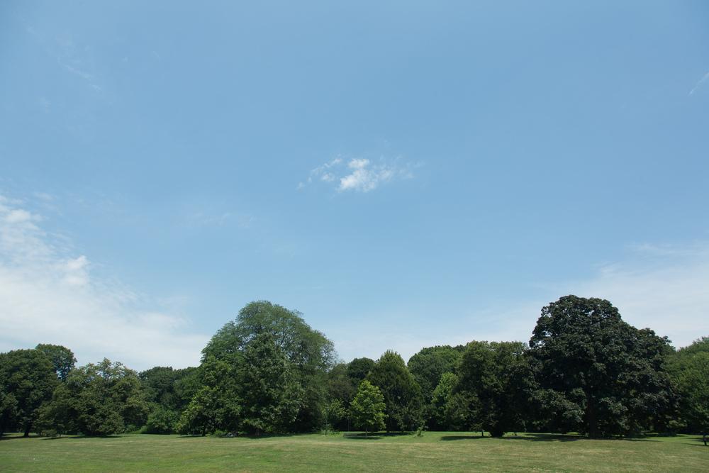 Skies-109.jpg