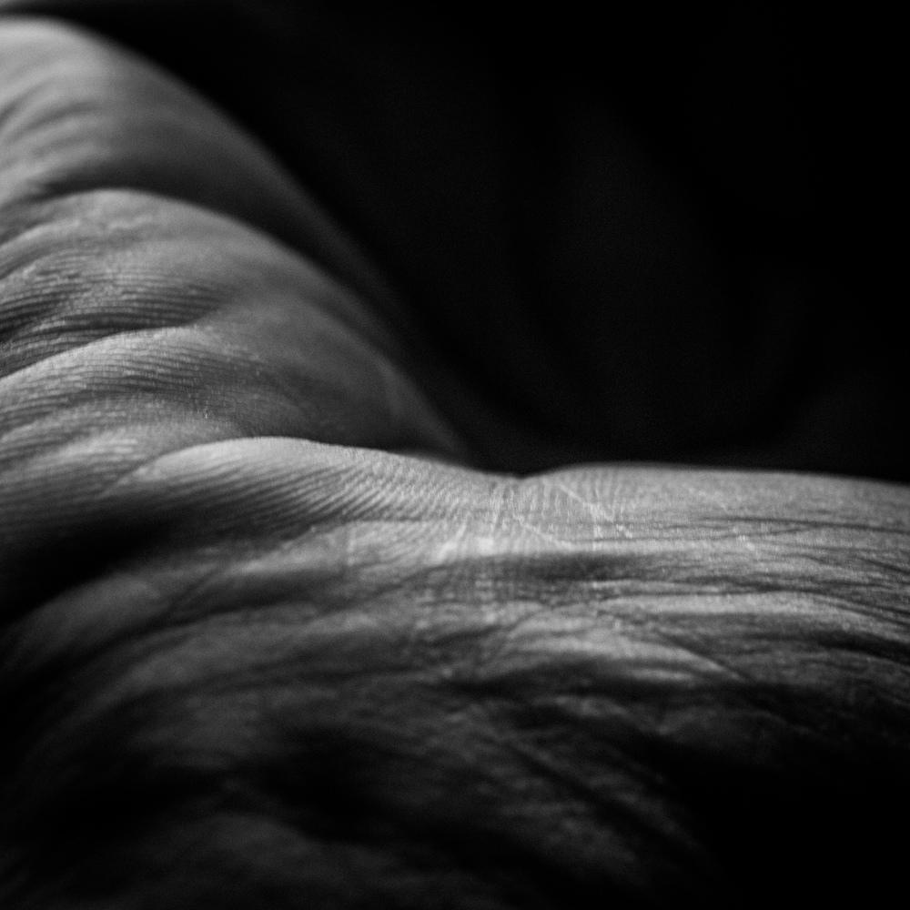 Hand21-107.jpg