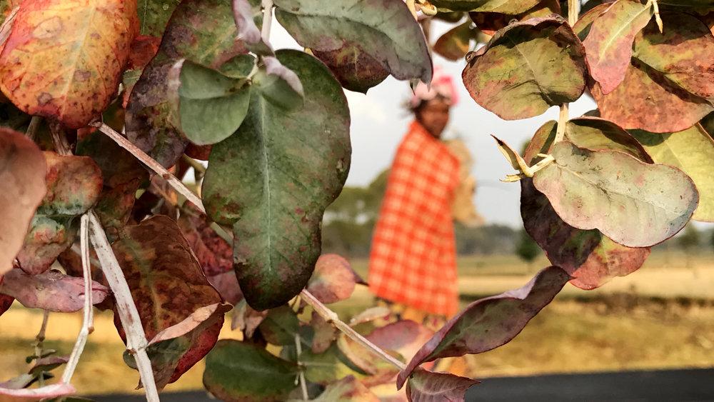 iPhone7camerareview-mann-Rwanda09.jpg