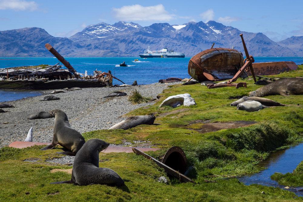 ©Mann_AntarcticaB9999133.jpg