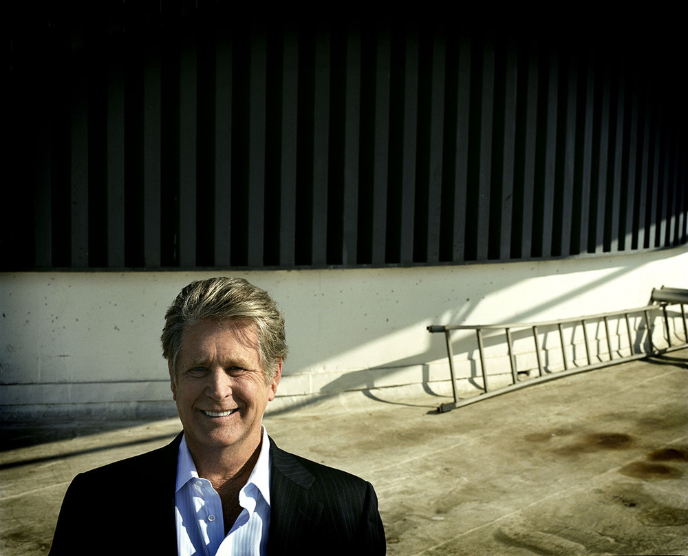 Brian Wilson - color - rooftop with ladder - James Minchin III.jpg