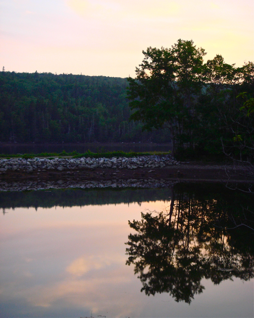 Still                          Nova Scotia, Canada