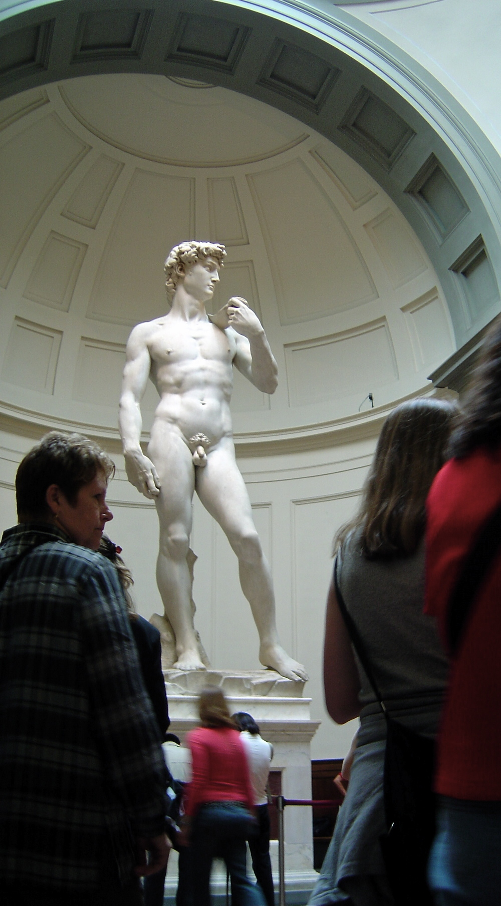 David,1501-1504       Michelangelo Buonarroti