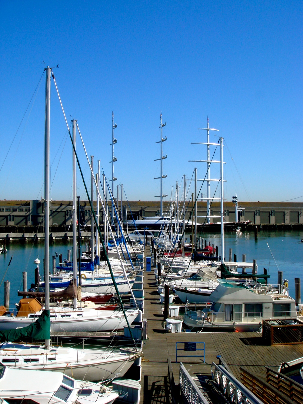 The Harbour in San Francisco