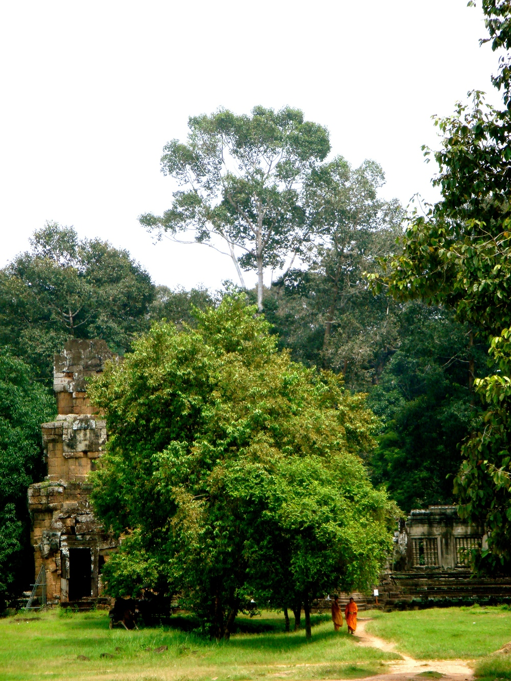 Monks seeking shade at the Angkor complex in Cambodia